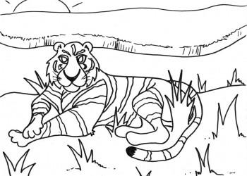 Lazy Tiger Sunday