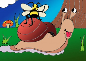 Snail and Bee (colored)