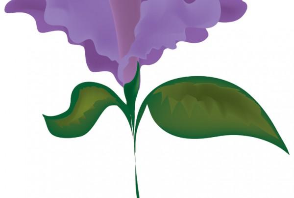 Lotus digital drawing