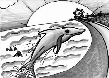 Beach Dolphin