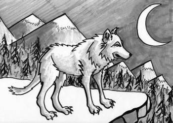 Wolf on a Ledge