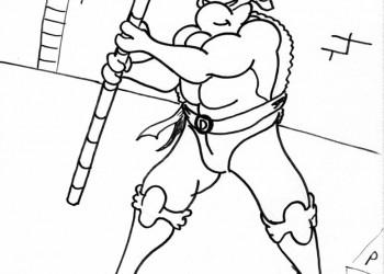 Donatello Spins