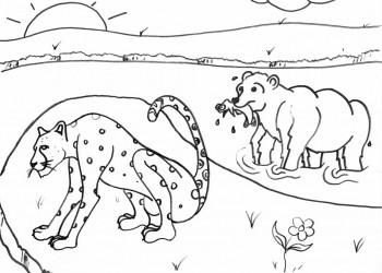 Cheetah and the Bear